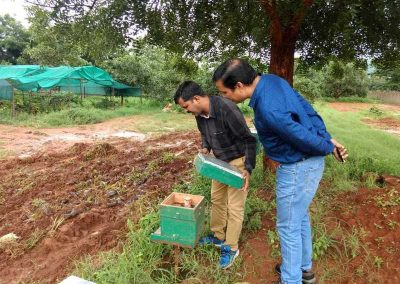 DDM NABARD supervising our apiculture unit