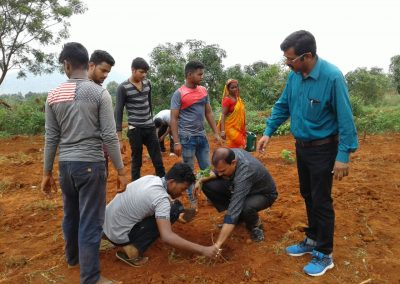Celebration of bana mahotsav in KVK Campus