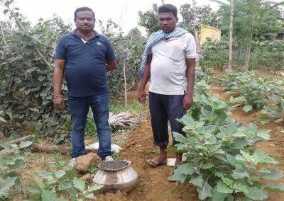 A step towards organic farming. Farmer using handikhata in vegetable farming in our Swatchh village programme under swatchh ruhantu susth