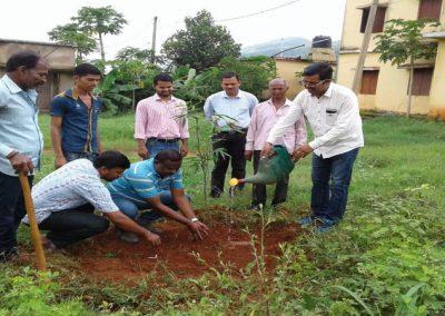 Plantation programme at KVK Campus on Independence Day