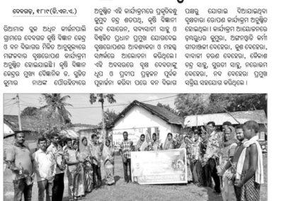 Plantation programme