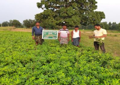 FLD_on_weed_management_in_groundnut